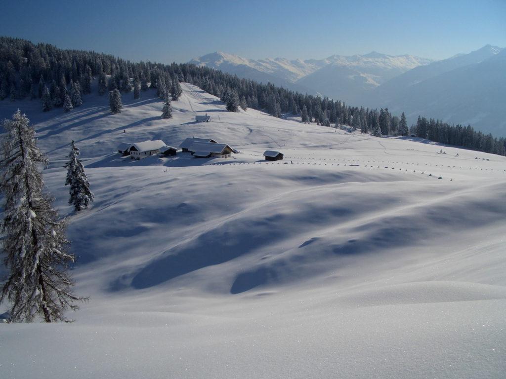 Schneeschuhe wandern - hier geht´s perfekt: Hügelige Almflächen mit Ausblick