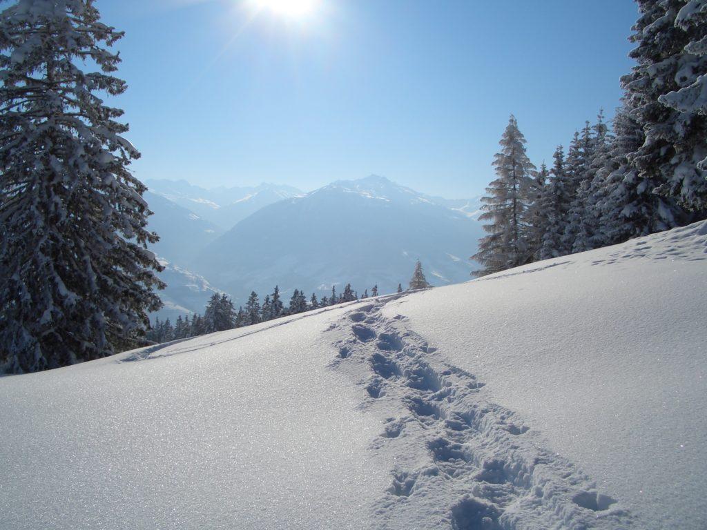 Schneeschuhe wandern - selbst die Spur im Schnee ziehen und die Freiheit in der Natur spüren