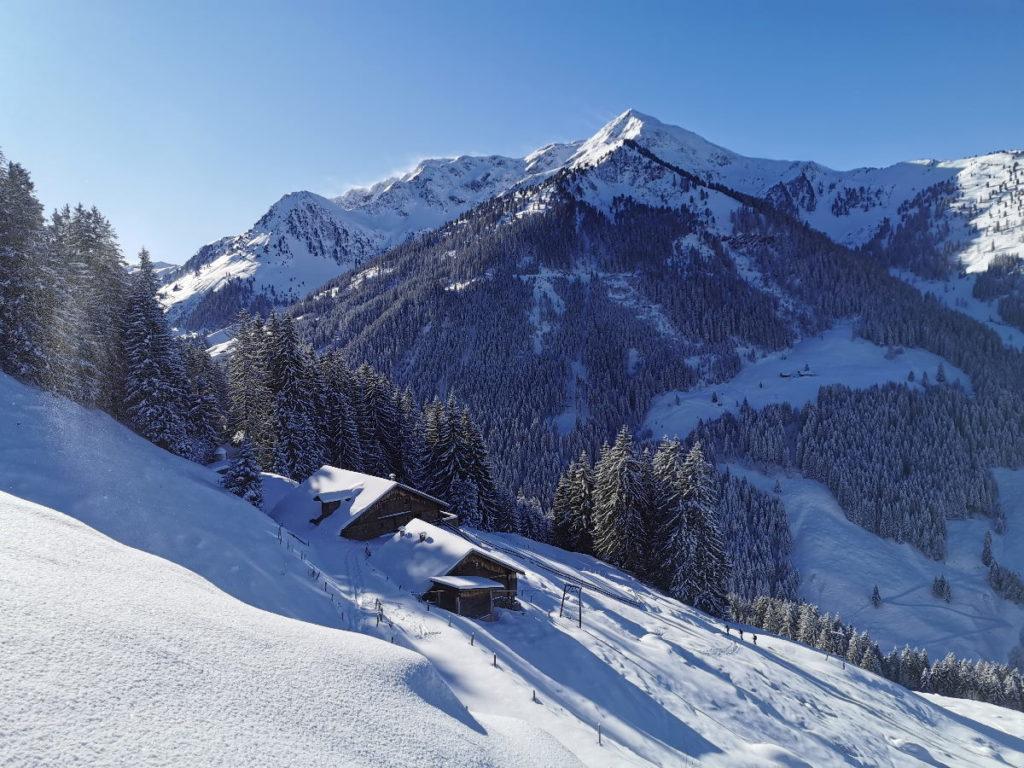 Deine Schneeschuhwanderung im freien Gelände mit Bergblick
