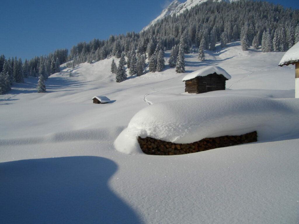 Schneeschuhwandern mittden durch die verschneite Landschaft